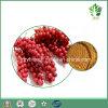 Выдержка ягоды Food&Beverage аддитивная Schisandra, a& Schizandrins Schisandrin, Schisandrin b