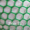 ダイヤモンドの穴の形のプラスチックは網突き出た
