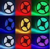 Indicatori luminosi esterni del nastro di alta qualità LED