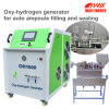 Oxyhrogen Fuel Pharmaceutical Glass Ampoule Encher garrafa de vidro Packing Machine