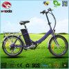 LCD表示が付いている250W電気折るバイク