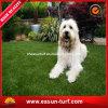 Erba artificiale della decorazione del giardino per i cani