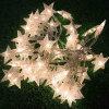 Natale esterno/dell'interno della striscia della stella della decorazione orna l'indicatore luminoso decorativo del LED