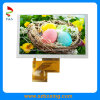 5.0-Inch 480 (RGB) X 272p LCD Panel mit Touch Screen
