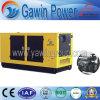 Insiemi di generazione diesel di serie di Quanchai di alta qualità