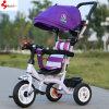 Bicicleta/Trike del juguete de los niños con la rueda tres