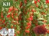 自然な健康のWolfberryのエキス30% ~50%の多糖類