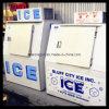 Escaninho de armazenamento ao ar livre do gelo da única porta (DC-380)