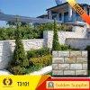 Pietra di pietra culturale della natura delle mattonelle della parete delle mattonelle (T3101)
