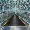 Beständige und sichere Passagier-Förderanlagen-beweglicher Bürgersteig