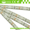 3528 Flexible impermeable LED Strip 300LEDs con CE, RoHS