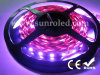 Droom Color RGB LED Tape Light 60LEDs/M