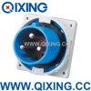 En 60309 enchufe industrial azul de 12AMP 3p (QX3665)
