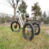 Fat Tire de tres ruedas E Trike