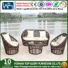 柳細工の屋外の家具のソファーの一定のPEの藤のソファー(TG-013)