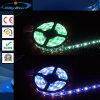 Luz de tira impermeable de la nueva 2017 tira 12V 24V 5050SMD 60LED/Roll RGBW LED de RGBW LED