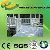 Revestimento de madeira amigável barato da grão WPC de Eco