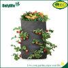 [أنلليف] [ب] بناء خضر ينمو زهرات حقيبة