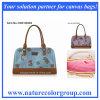 Reizende Form-Dame Handbag mit Drucken-Segeltuch (HBP-003)