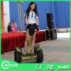 費用有効中国Electric Chariot Scooter 2*1000W
