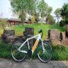 MTB verstecktes Batterie-elektrisches Fahrrad Rseb-304