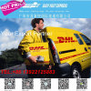 DHL Shipping Forwarder From Chine vers les Etats-Unis