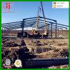 Taller de la estructura de acero de Expert Supplier en Rumania
