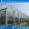 Casa verde de cristal del invierno de aluminio económico y profesional de Sun
