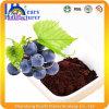 Extrait de graines de raisin pour Lady Health