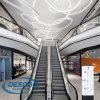 Escadas da escada rolante do fabricante do elevador de China