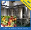 Groenten/de Natuurlijke Lopende band van de Drank van het Vruchtesap