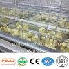중국 공장 공급 자동적인 가금은 어린 암탉 닭을%s 감금한다