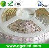 Tira flexible del LED (OGR-007)