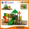 Apparatuur en Pretpark Vs2-140106g-29 van de Speelplaats van China de Uitstekend Openlucht