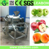Sale를 위한 500kg/H Stainless Steel Mango Juice Making Machine