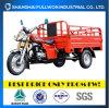Triciclo lleno del cargo del motor de la rueda de China 150cc 3 de la suerte Fl150zh-C1