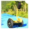 Wiel twee die ElektroAutoped, de Autoped van de Blokkenwagen van de Mobiliteit Ecorider in evenwicht brengt