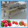 野菜およびフルーツのソート機械