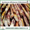 Octacosanol 50%-90%の砂糖きびのPolicosanolの自然なエキス