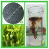 Fertilizante orgânico do ácido Humic do pó do fertilizante orgânico de 100%