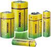 Carbon-Zink-Batterie (SHDY-R20S-2S)