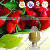 有機性Gojiの果実のエキスの粉