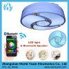Hete Slimme LEIDEN van de Verkoop Licht met Bluetooth Spreker gewicht-SL06
