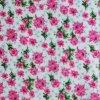 Oxford 600d Printing Polyester Fabric avec PVC/PU (XQ-335)