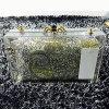 De nieuwe Dames van de Voorraad ontruimen de Online het Winkelen Handtassen van de Avond (EB610)
