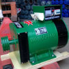 Generador trifásico del cepillo de la CA de LANDTOP