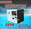 Diesel van /5.5kVA van de lage Prijs 5kw Draagbare Stille Generator