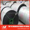 Constructeur anti-calorique de bande de conveyeur de norme de l'OIN
