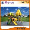2016 Apparatuur van de Speelplaats van de Reeks van het fruit de Plastic door Vasia (VS2-6066B)