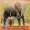 Xワシのケージの飼鳥園であって下さい- Zoomeshの動物園の網Ss 304編まれる316手は塀、ステンレス鋼の金網を保護する